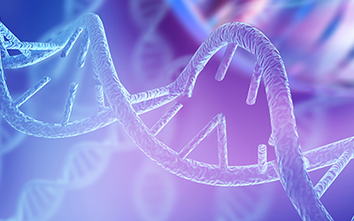 Safeology Affects DNA Strand - Rep Portal and Media Resource Image